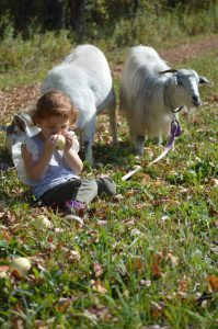 Seeing the Farm Through a Child's Eyes